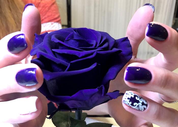 Дизайн ногтей , покрытие Shellac